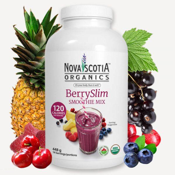 BerrySlim Smoothie Mix